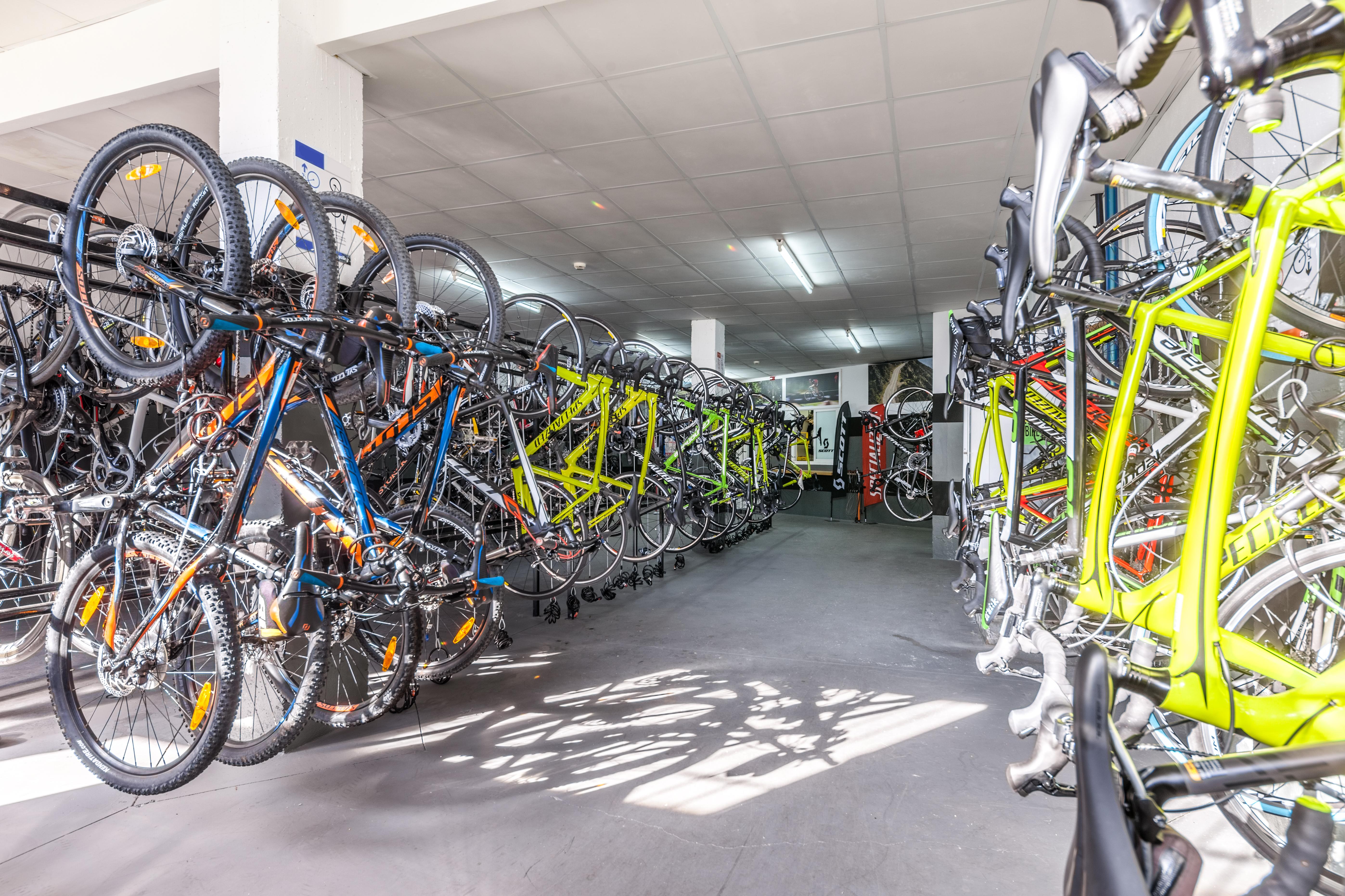 <h1>Our Bikes</h1>
